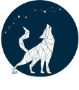 Pas & Wolf IT Services